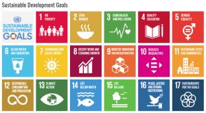 17 SDG Goals